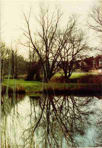 Photo:Valley Ponds 1985