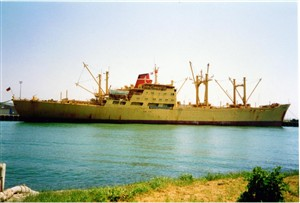 Photo: Illustrative image for the 'CARGO SHIPS  - 1990's / 2008' page