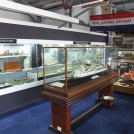 Photo:TSS Brighton model and the main display cabinet