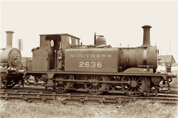 "Photo:Terrier 2636 ""Fenchurch"" - C1950"