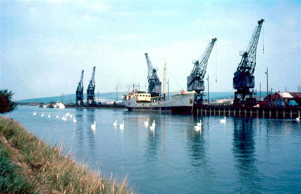 Photo:North Quay with elderley coaster and fleet of swans from 1960's