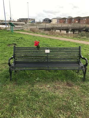 Photo: Illustrative image for the 'MEMORIAL BENCH POPPIES' page