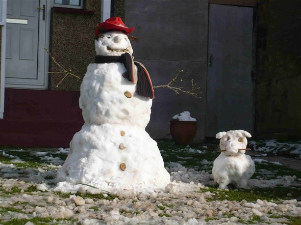 Photo:Snowman and his pet - Hillcrest Road