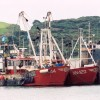 Page link: TRAWLERS AND THE OLD LIFEBOAT HOUSE