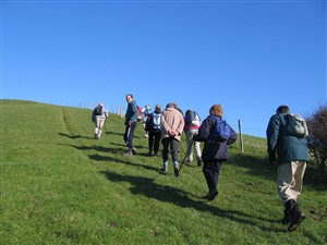 Photo: Illustrative image for the 'NEWHAVEN RAMBLERS' page